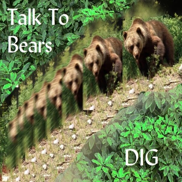 Cover art for Dig