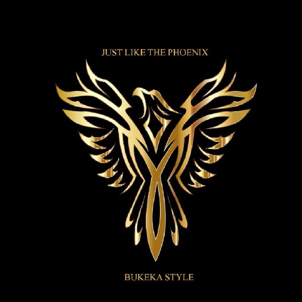 Cover art for Just Like the Phoenix
