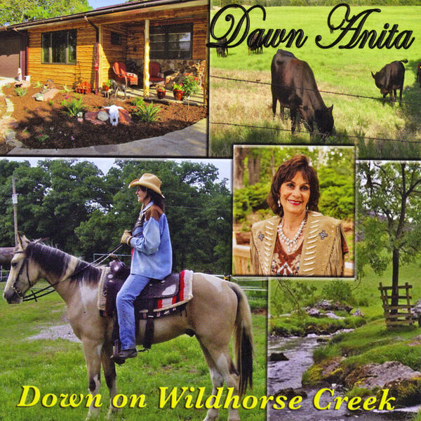 Cover art for Down on Wildhorse Creek