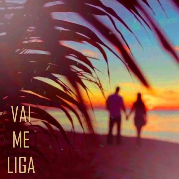 Cover art for Vai Me Liga