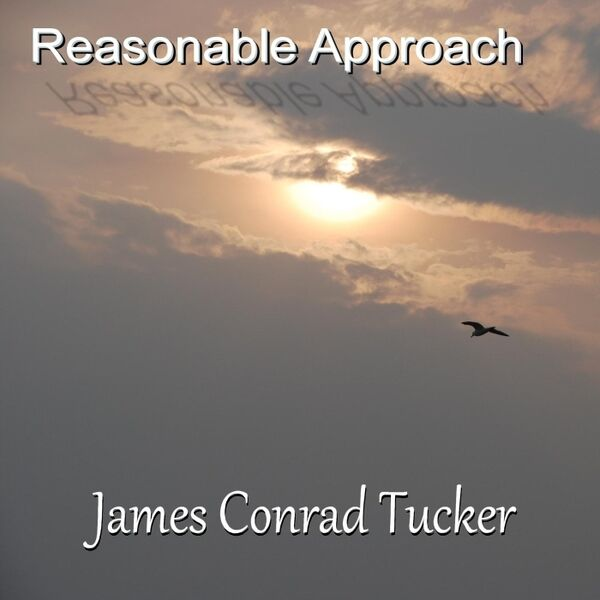 Cover art for Reasonable Approach