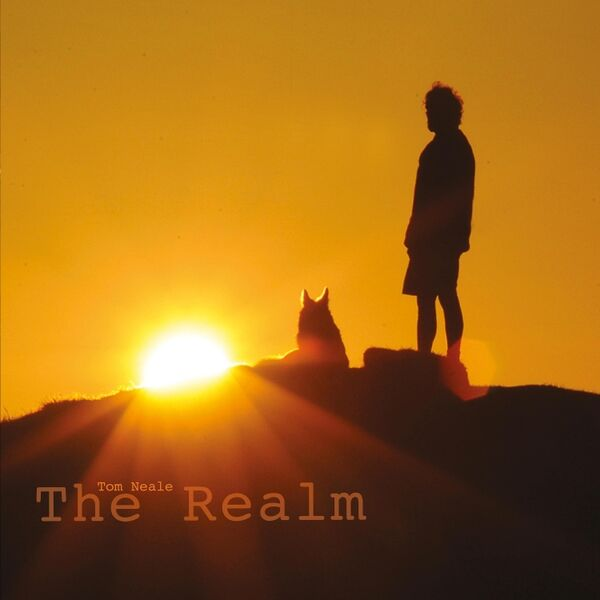Cover art for The Realm