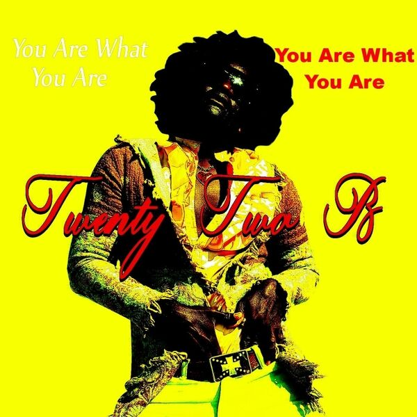 Cover art for You Are What You Are