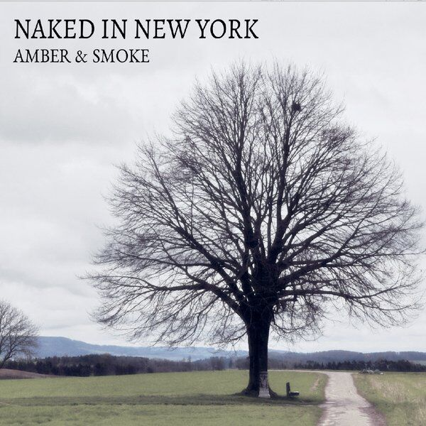 Cover art for Naked in New York